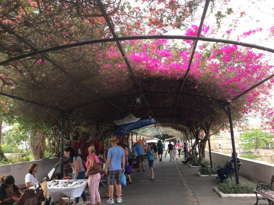 Market under a garden